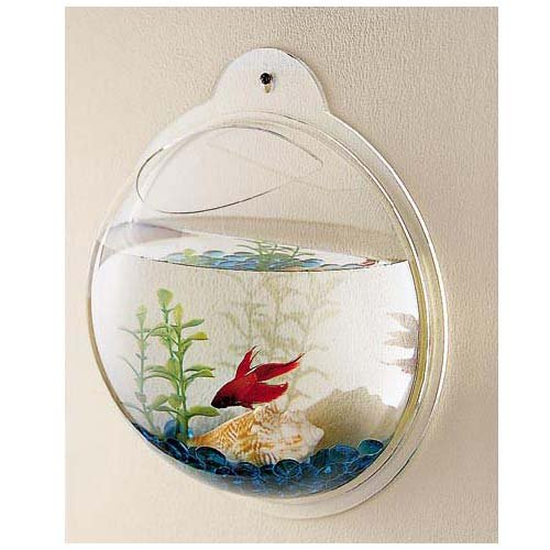 half-sphere-wall-hanging-fish-tank